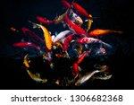 koi swimming in a water garden... | Shutterstock . vector #1306682368