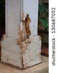 Close Up View Of Termite Damag...
