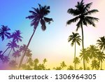 palms and sun  tropical sunset... | Shutterstock . vector #1306964305