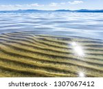 shallow sea and clear  visible... | Shutterstock . vector #1307067412