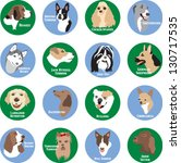 dog breeds | Shutterstock .eps vector #130717535
