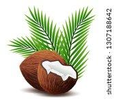 coconut icon  broken coconut...   Shutterstock .eps vector #1307188642