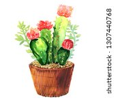 cactus with pink flower ... | Shutterstock . vector #1307440768