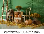 Beautiful Autumn Composition...
