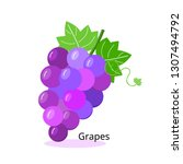 bunch of grapes purple icon on... | Shutterstock .eps vector #1307494792