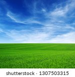 green field and blue sky with...   Shutterstock . vector #1307503315