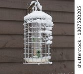Bird Feeder Attached To A...