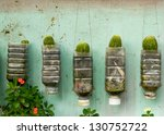 Plant Walls In Recycled Pot