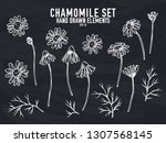 vector collection of hand drawn ... | Shutterstock .eps vector #1307568145