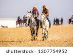 shymkent  kazakhstan  november... | Shutterstock . vector #1307754952