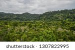 mountainscape of langkawi... | Shutterstock . vector #1307822995