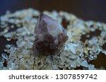 meditation grid kit. quartz... | Shutterstock . vector #1307859742