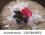 healing crystals  clear quartz  ... | Shutterstock . vector #1307860852