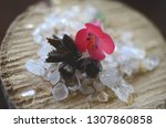 healing crystals  clear quartz  ... | Shutterstock . vector #1307860858