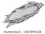 sweet corn black and white | Shutterstock .eps vector #1307894128