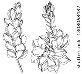 vector jungle botanical... | Shutterstock .eps vector #1308068482