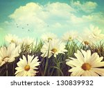 Vintage Look Of Summer Daisies...