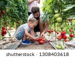 grandfather son and grandson... | Shutterstock . vector #1308403618