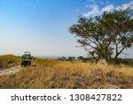 safari vehicle on hill in...   Shutterstock . vector #1308427822