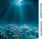sea or ocean seabed with coral... | Shutterstock . vector #1308747445