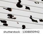 white siding broken into big...   Shutterstock . vector #1308850942