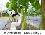smart robotic farmers harvest... | Shutterstock . vector #1308945532