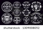 set of vintage badges  logos ... | Shutterstock .eps vector #1309008052