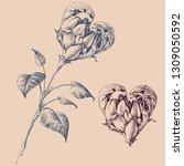 heart shaped flower design... | Shutterstock .eps vector #1309050592