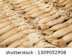 raw squid arrange on the market ...   Shutterstock . vector #1309052908