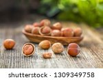 close up of hazelnuts on wooden ... | Shutterstock . vector #1309349758