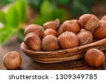 close up of hazelnuts on wooden ... | Shutterstock . vector #1309349785
