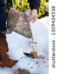 A Man Is Pouring Bird Seed From ...