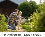 Middle age man and his little son watering flowers in the garden at summer sunny day. Gardening activity with little kid and family - stock photo