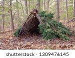 Primitive Bushcraft Survival...