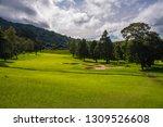 bedoegoel  bali   indonesia  ...   Shutterstock . vector #1309526608