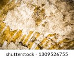 genuine leather texture... | Shutterstock . vector #1309526755