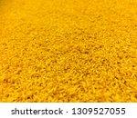 yellow neat carpet floor  ... | Shutterstock . vector #1309527055