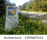 traditional shell sign and... | Shutterstock . vector #1309687615