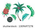 palm tree  pineapple  jungle... | Shutterstock .eps vector #1309697278