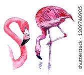 pink flamingo watercolor work. | Shutterstock . vector #1309760905