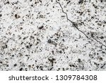 surface of concrete wall for... | Shutterstock . vector #1309784308