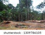 deforestation of the amazon...   Shutterstock . vector #1309786105