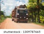 deforestation of the amazon...   Shutterstock . vector #1309787665