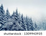 snow covered fir trees in... | Shutterstock . vector #1309943935