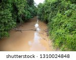 typical rain forest river...   Shutterstock . vector #1310024848