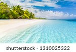 beautiful beach. tropical beach ... | Shutterstock . vector #1310025322