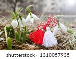 Snowdrops and martenitsa....
