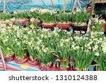 causeway bay  hong kong   03...   Shutterstock . vector #1310124388
