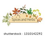 vector spices and herbs | Shutterstock .eps vector #1310142292