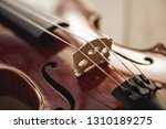 close up view of strings of... | Shutterstock . vector #1310189275